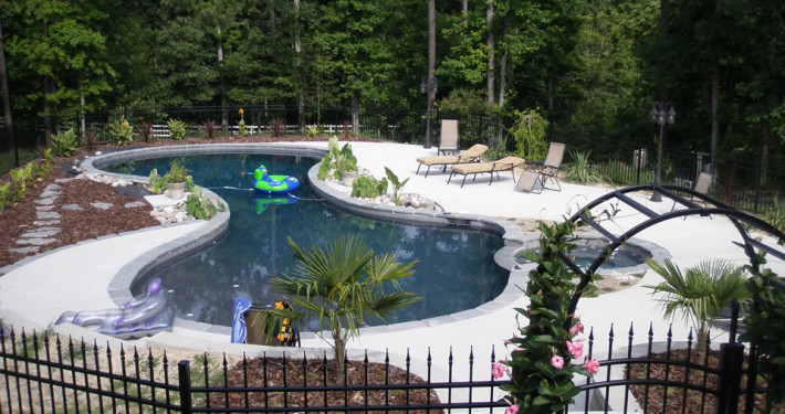 Mountain lake oasis gunite pool and spa