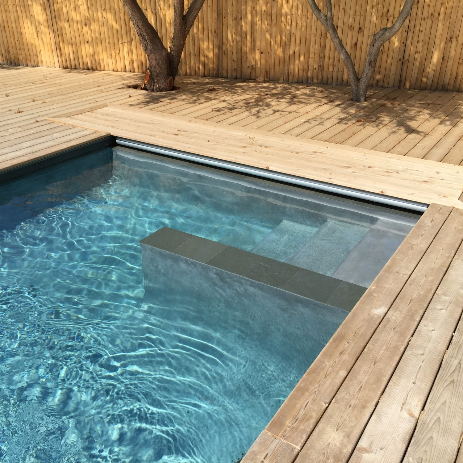 Sleek Custom Gunite Lap Pool In Montauk Patricks Pools